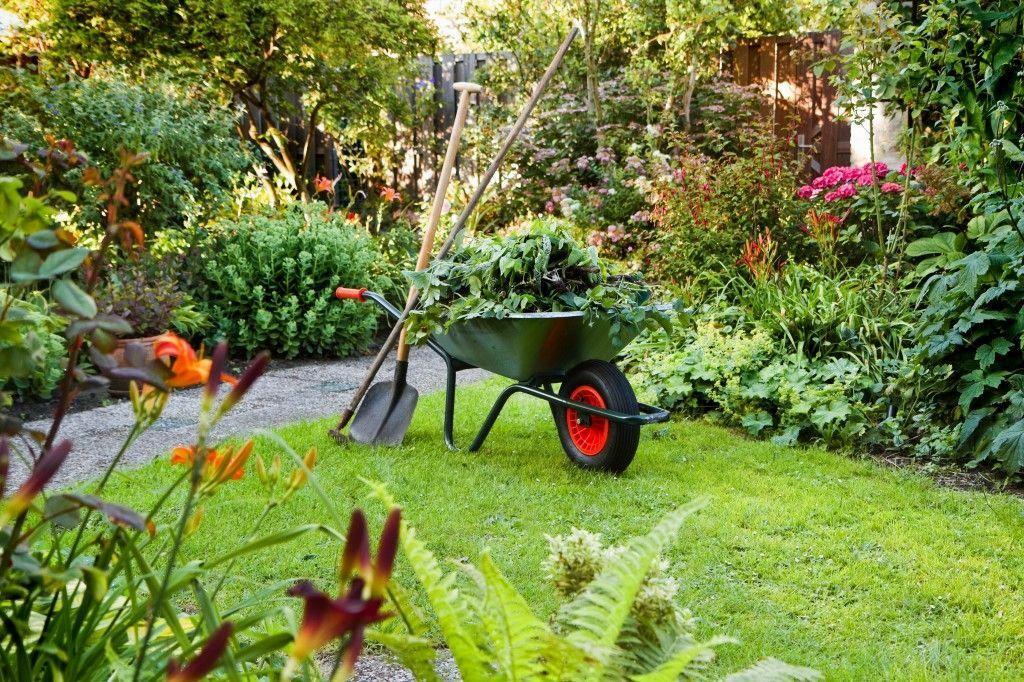 Jahrespflege von Gärten und Wohnanlagen