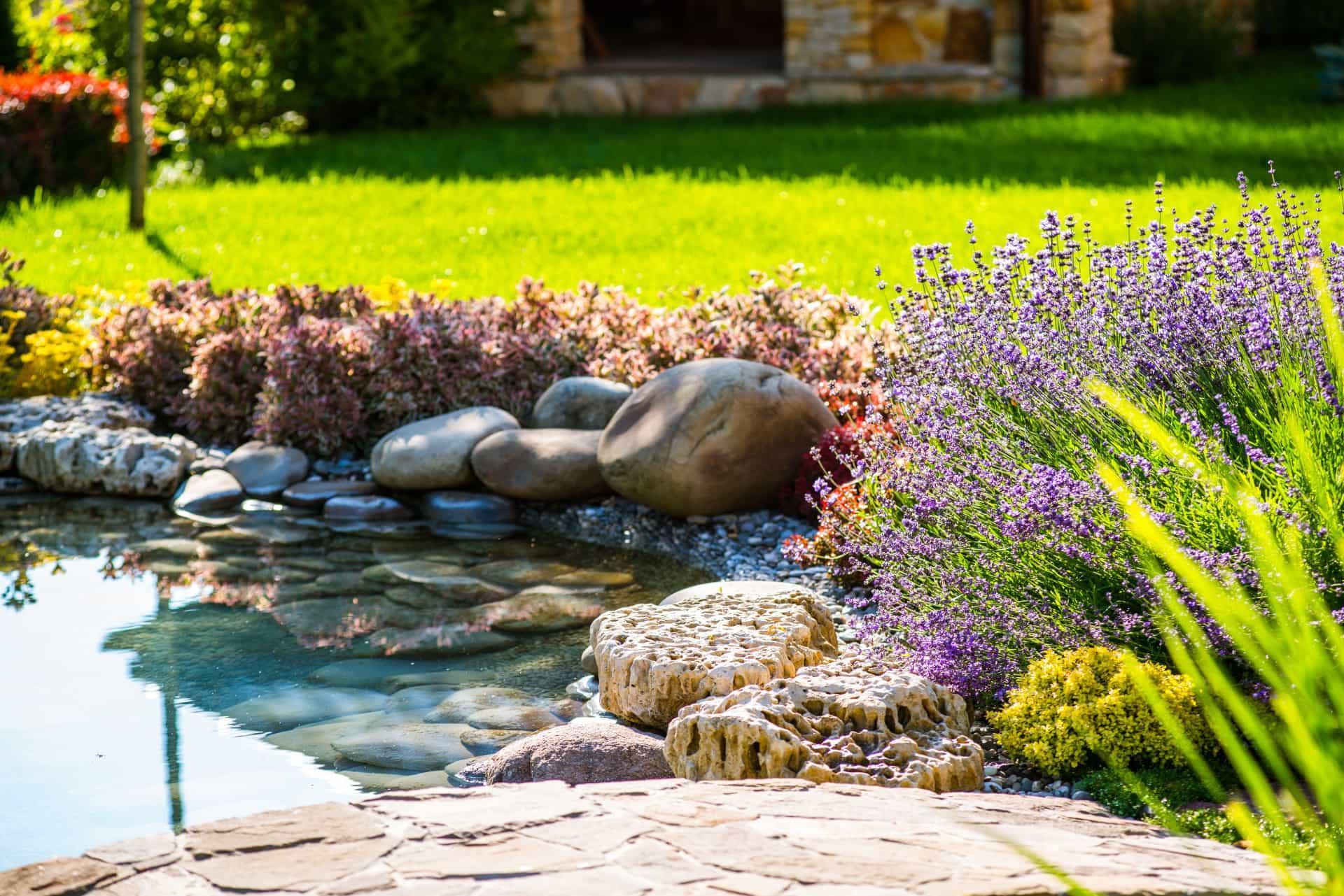 Teichbau - Azizi Garten- und Landschaftsbau